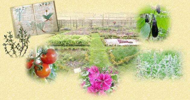 名古屋近郊でハーブと有機野菜の菜園づくりをする「ポタジェコース」のイメージ