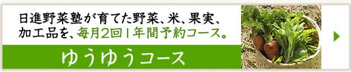 名古屋近郊で有機野菜や米を買うコース