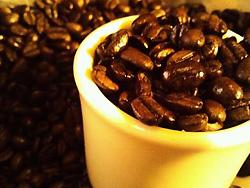 煎りたてコーヒー豆