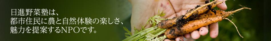 名古屋・日進で農体験ー日進野菜塾