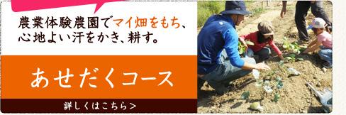 名古屋近郊の市民農園で有機野菜づくりを学びながら自分で野菜をつくるコース