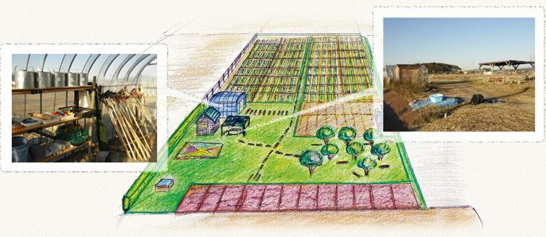 安心な無農薬野菜、果物、加工品の栽培圃場イメージ
