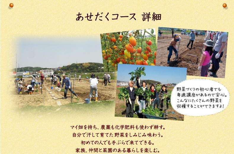 名古屋近郊の市民農園-あせだくコース詳細 野菜作りの初心者でも毎週講座があるので安心です。無農薬、無化学肥料で野菜を一緒に育てましょう!