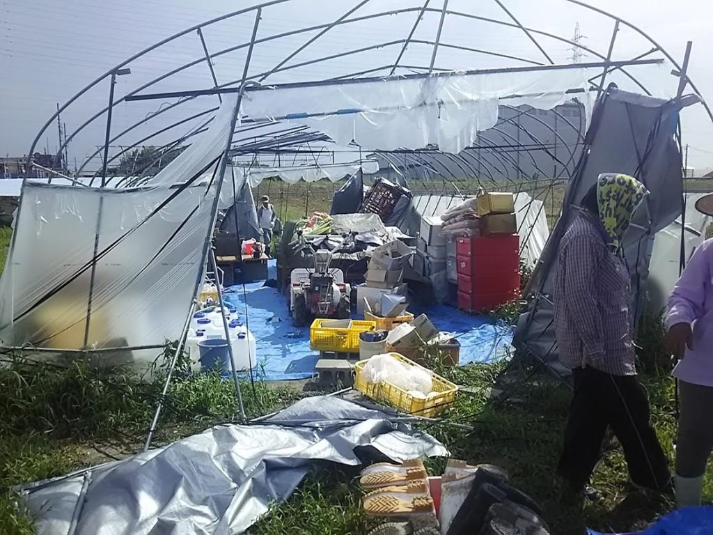 181104 今年の台風の被害①